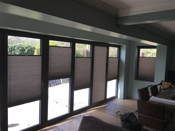 'Duette' Pleated blinds